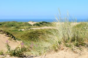 Ogmore Sand Dunes